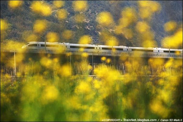 2011年2月6日,英德。CRH3C通过武广高铁两厢山隧道群。(IMG-5310-110206)
