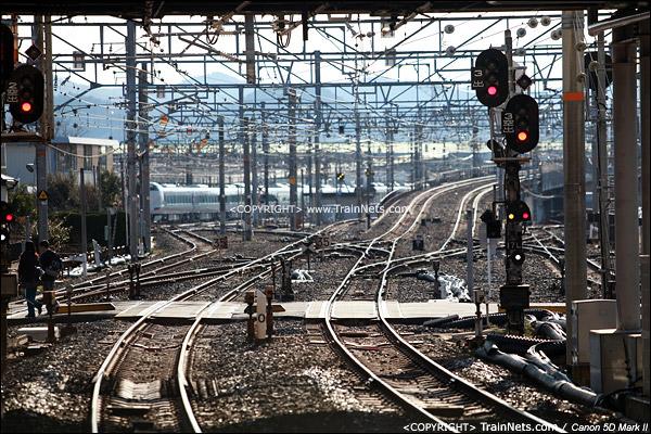 在日根野站站台向西看,右侧上桥线路前往关西机场,左侧线路前往和歌山。(IMG-3940-120130)