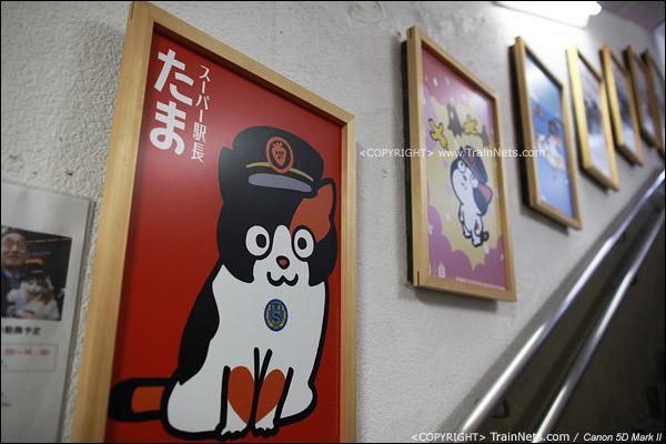 和歌山站。出站通道连接的9号站台便是贵志川线的站台,楼梯口已经是贴满了阿玉的画像。(IMG-4059-120130)