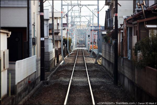 和歌山电铁贵志川线,列车在民宅中穿行,开往贵志站。(IMG-4123-120130)