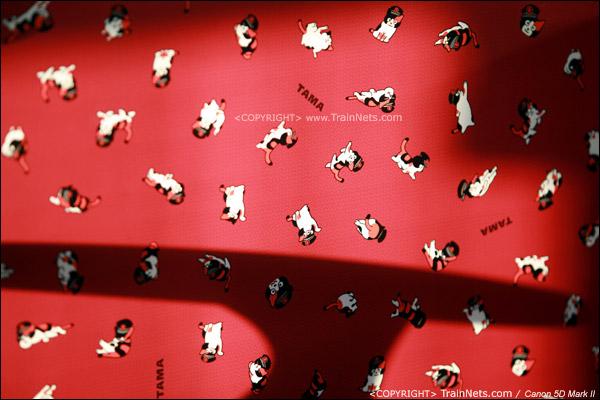"""""""阿玉电车"""",布艺软垫座椅上也画满了猫图案。(IMG-4236-120130)"""