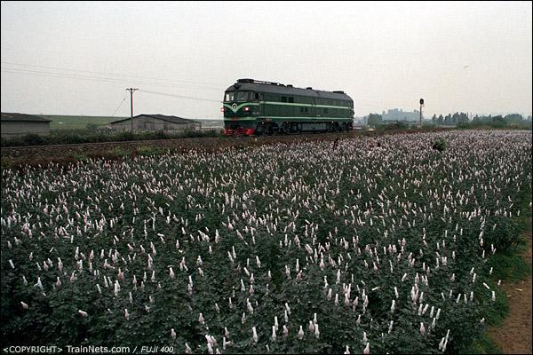 2012年12月19日。广东三水,北江大堤。DF4B单机运行。(D6920)