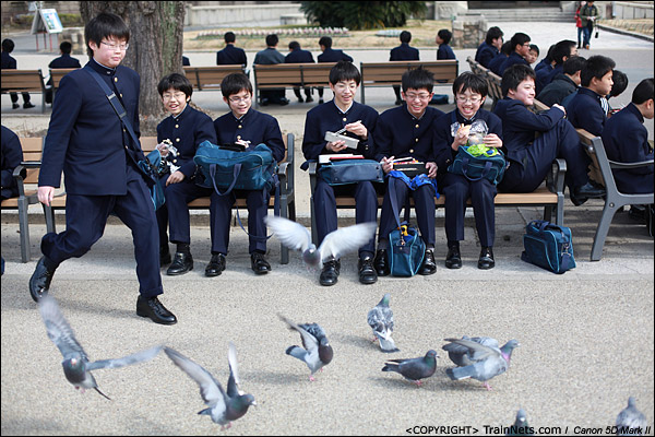 大阪城公园。旅游的日本中学生。(IMG-4982-120131)