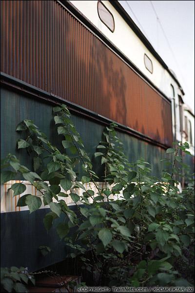 2013年9月7日。韶关机务段。停放SS1的地方已是杂草丛生。(E0629)