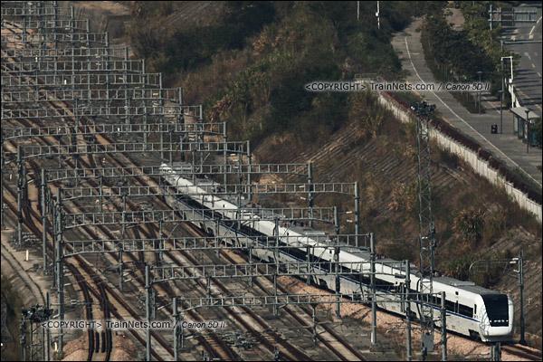 2013年12月2日。深圳北站。(IMG-8986-131202)
