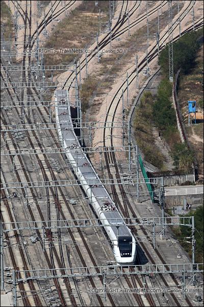 2013年12月03日。深圳北站。(IMG-9591-131203)