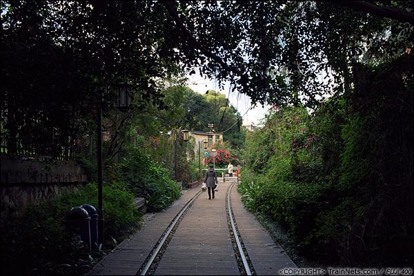 2013年12月。厦门铁路公园。 植被茂盛的铁路公园。(E3019)