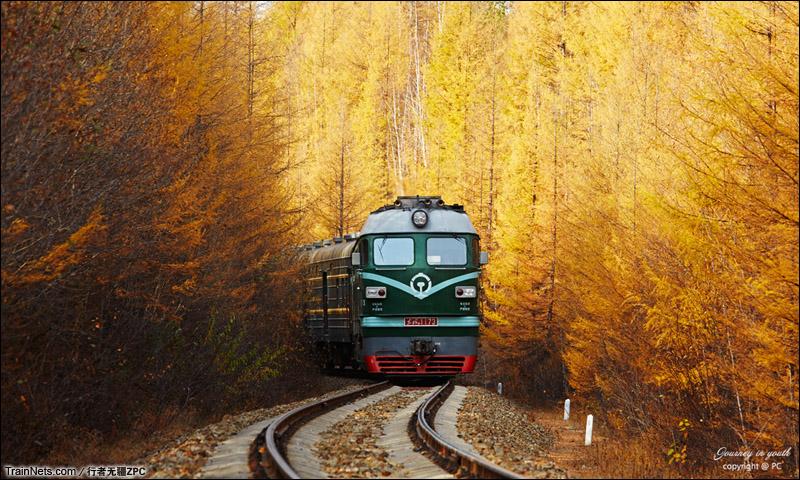 2014年秋。大兴安岭,满眼金色的世界。经典的慢火车,悠然地向前。