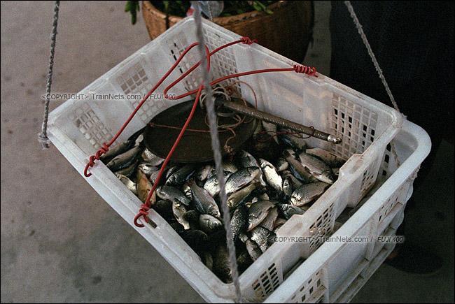 2013年10月。渝怀线。锦和站,菜农的担子里装着本地的小鱼。(E1502)