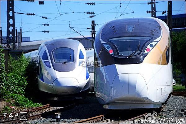 2015年6月30日。北京。右:长客厂生产的中国标准动车组,编号CRH-0305。左:四方厂生产的CRH-0207。(图/罗春晓)