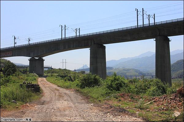 再次从高铁桥下穿过,远处可以看到现复线的漳河1号大桥,三条铁路又再相会。老线到此处还是比复线高。(图/阿准)