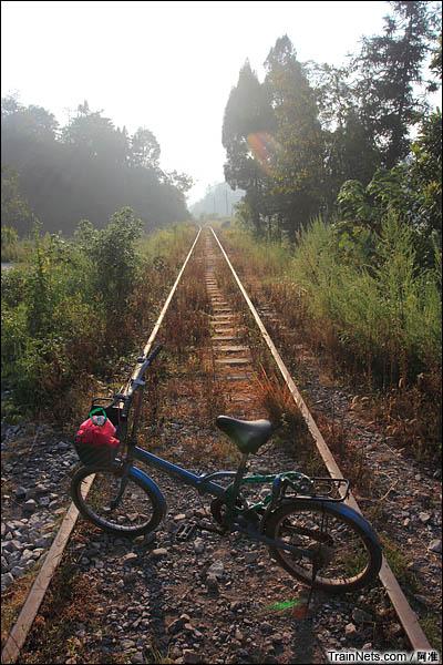 清晨步行杨梅山支线。尝试在钢轨上推车从铁路回车岗,发现其实并不难。(图/阿准)