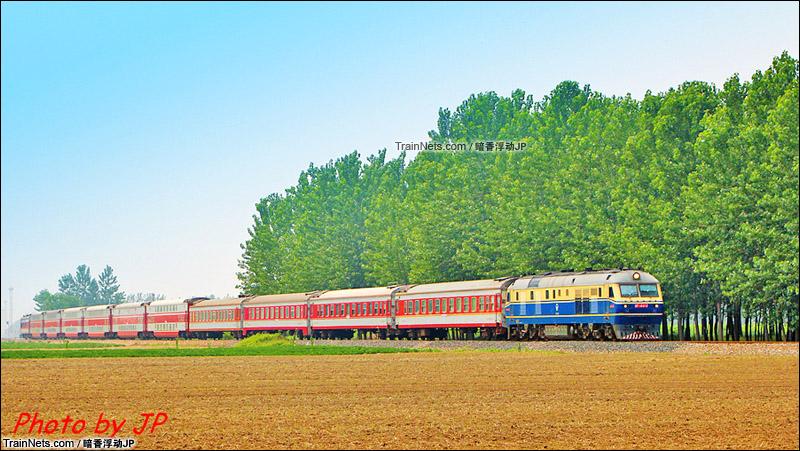 2013年8月。新长铁路新沂段。K771次,济南-南通在林间穿行。(图/暗香浮动JP)