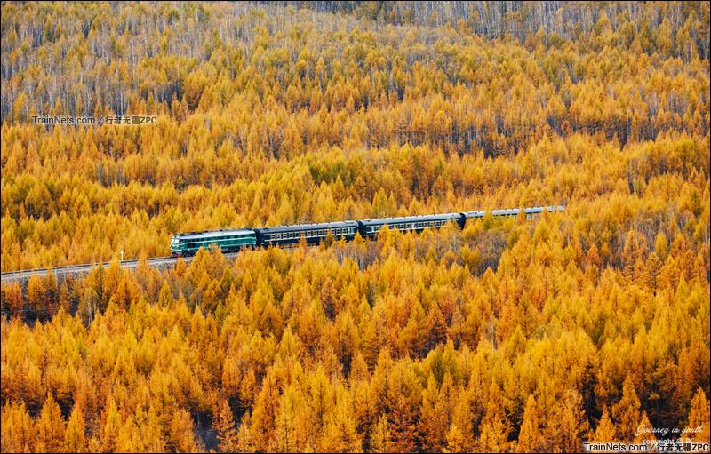 2015年9月。富西线。DF4B牵引小票穿行在五色山中。(图/行者无疆ZPC)