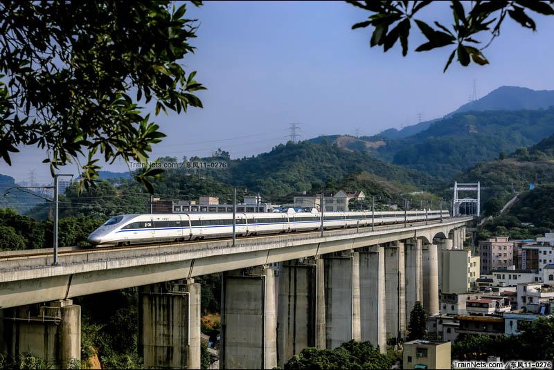 2015年11月。深圳。广深港高铁CRH380AL通过龙华水田特大桥。(图/东风11-0276)
