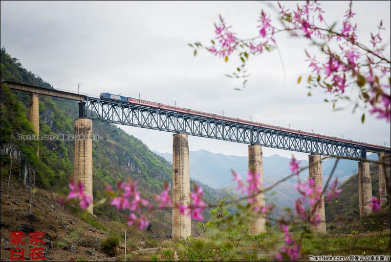 2015年3月。南昆线,板其2号桥。K1205次,深圳东-昆明开往昆明方向。(何俊云@家在蒙自)