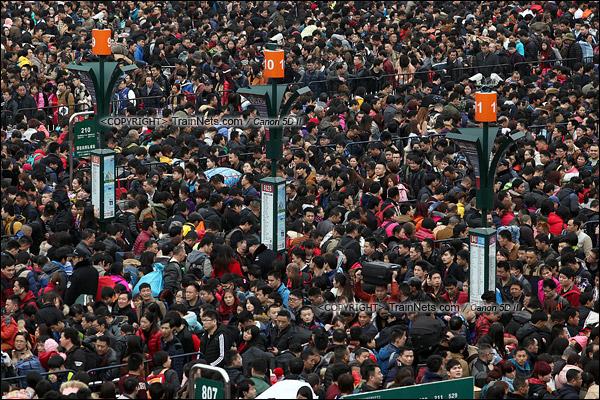 2016年2月2日。下午3点。广州火车站东广场。旅客正在通过绕圈排队进入候车。(IMG-9448-160202)