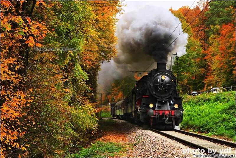 2015年10月。卡尔斯鲁厄市铁S1线(Albtal线),穿梭在秋日森林中的蒸汽机车。这条线路平时是一条通勤铁路,春夏秋季每月最后一个周日都会举办蒸汽机车复驶活动。这次的本务机是1921年生产的58-311。(图/袁东方)