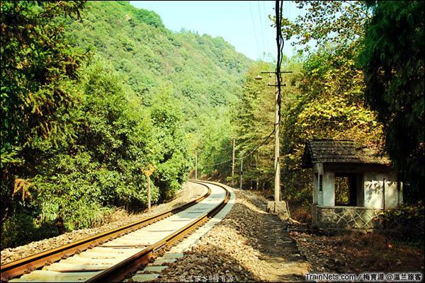 2014年10月26日。金千线。朱家埠-千岛湖区间。1、2号隧道间的大弯道,颇有森林秘境铁路的味道。(图/温兰旅客)