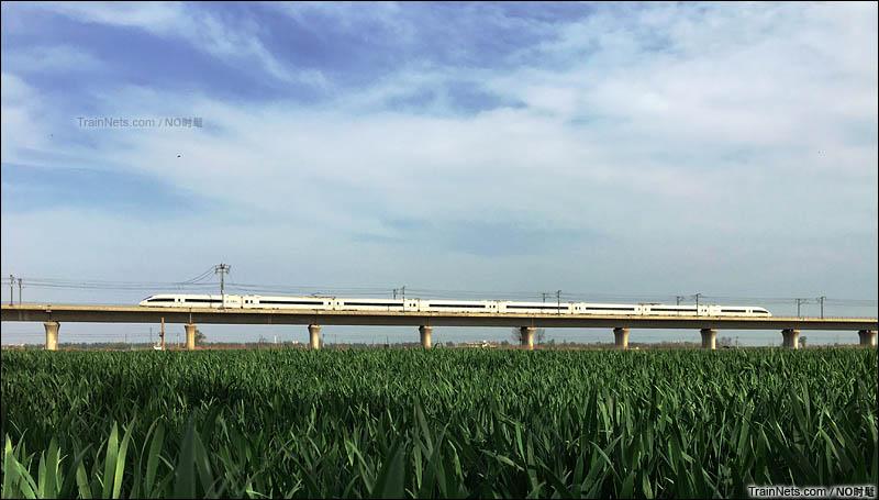 2016年4月,石家庄红旗大街。京广高铁石武段,开往春天的高铁。(图/NO时髦)