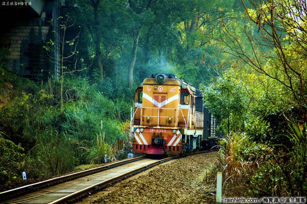 2014年10月26日。金千线从新安江站往北行,DF7C牵引着货车在密林中穿出。(图/温兰旅客)
