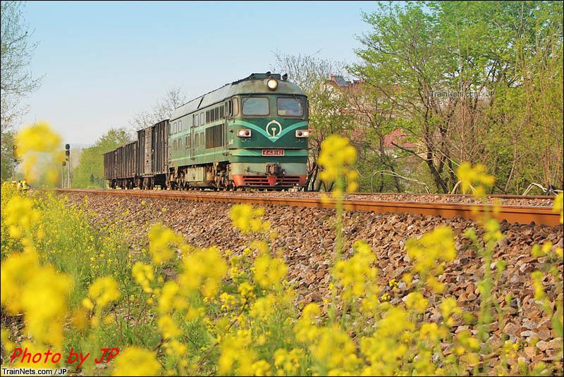 2016年。淮南线下行双刘-东关区间,DF4B牵引货列飞驰在花田中。(图/JP)
