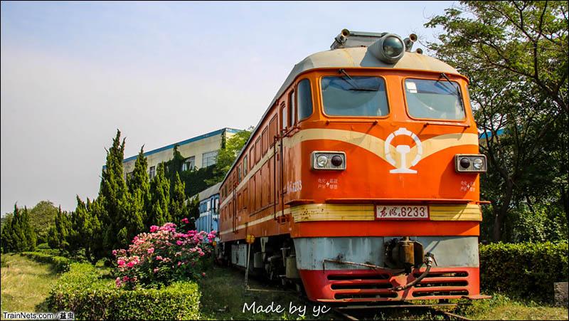 2016年5月。山东淄博段区封存的DF4-6233号车。经历过站调和7053/4小票本务机的6233,最后在淄博段区花丛掩映的轨道上养老。(图/益虫)