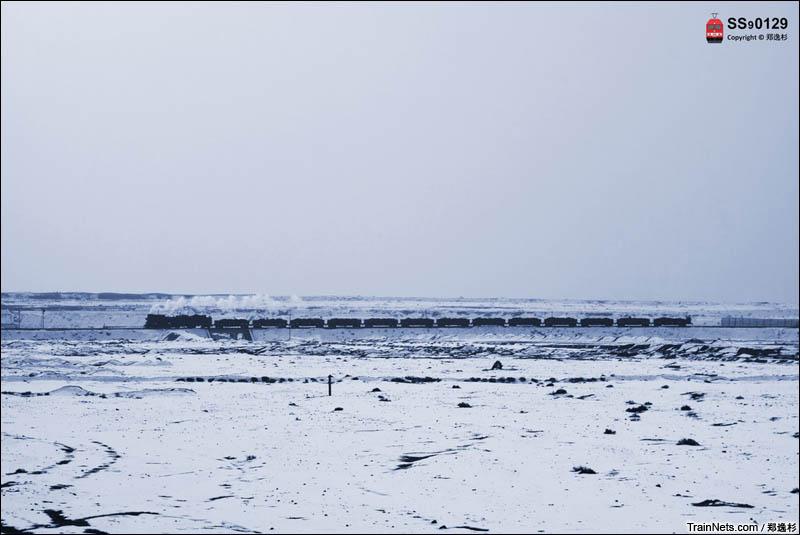 2016年2月。新疆哈密。三道岭煤矿,蒸汽机车牵引列车行驶在白茫茫的雪原上。(图/郑逸杉)