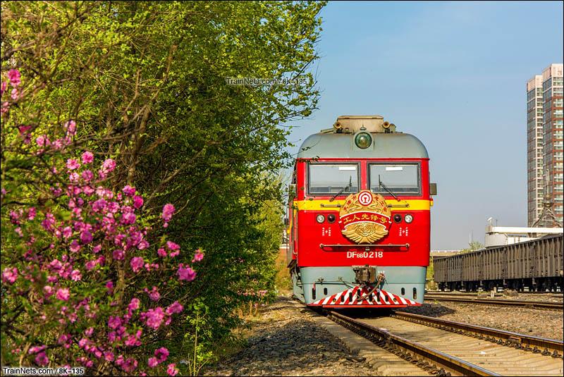 2016年4月8日。天津市南开区。天津南环铁路DF8B-0218工人先锋号停靠在李七庄站。(图/8K-135)