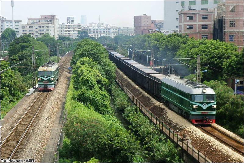 2014年8月29日。广州石井。两台DF4同向快跑,分别行驶在京广正线和江村货线上。(图/范国平)