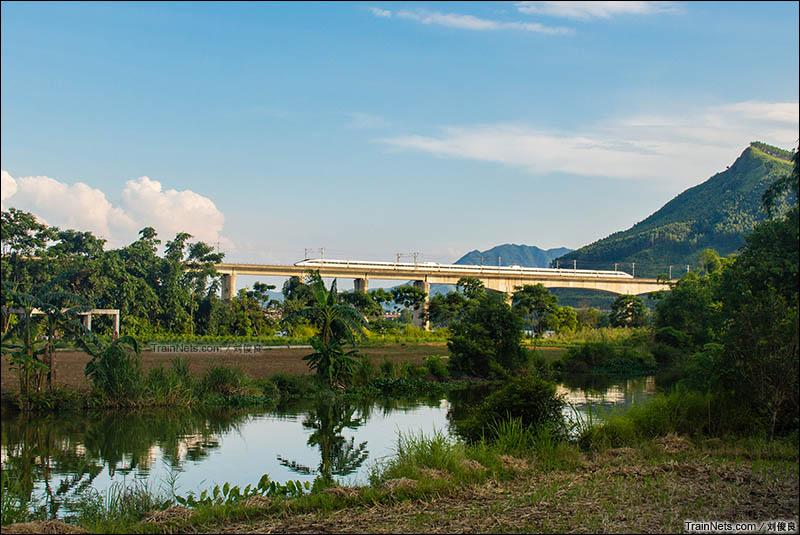 2016年8月5日。桂林永福县。CRH380A执行G423次(石家庄-南宁)行驶在衡柳客专线上。(图/刘俊良)