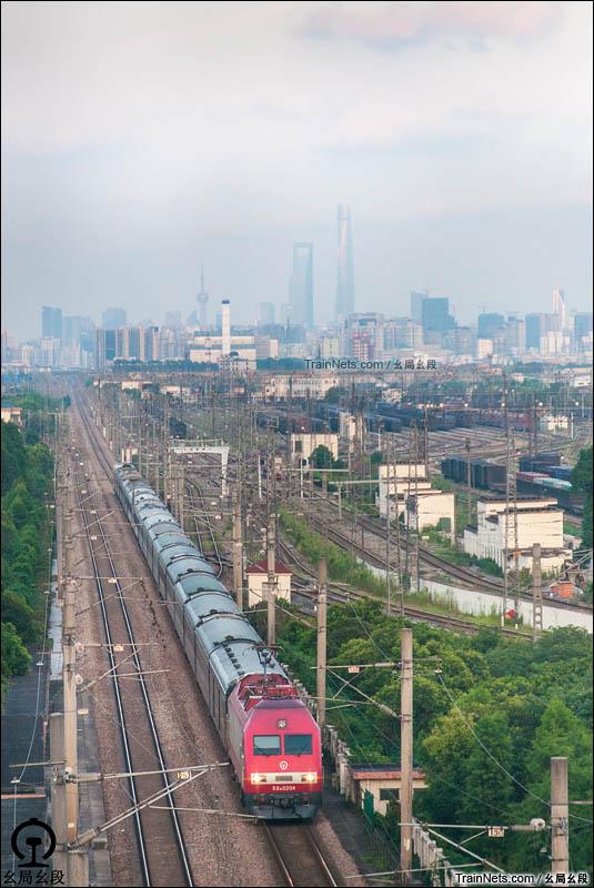 2016年8月16日。上海,南翔嘉闵高架。京沪特快T110次通过。(图/幺局幺段)
