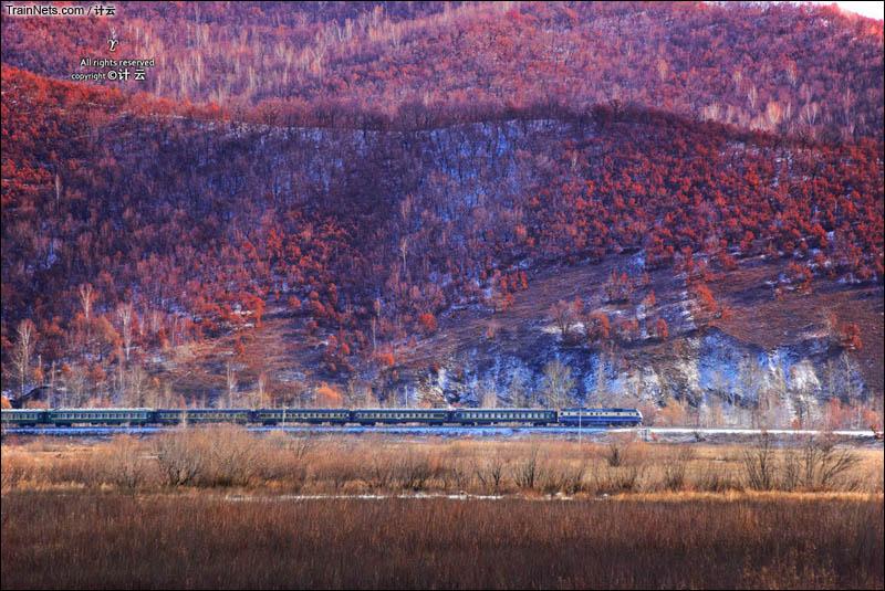 2016年10月18日。富西线。K7150次(加格达奇-海伦)行驶在红叶山下,即将到达讷尔克气站。(图/计云)