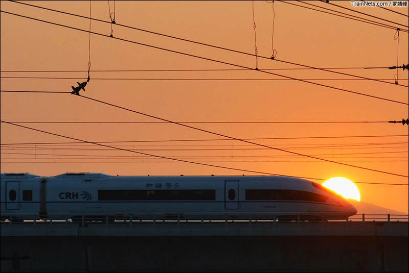 2016年8月2日。北京石景山南站外。黄昏时刻,京广高铁列车在夕阳照射下跨过下方的丰沙铁路和京原铁路。(图/罗靖峰)