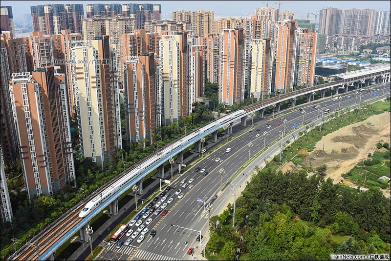 2016年8月17日。套跑成灌线的CRH2A快速驶过红光镇站。(图/广铁德段)