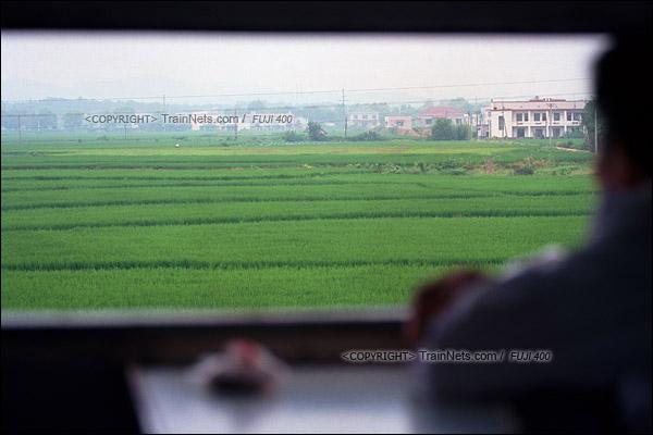2012年8月25日。长沙至韶山的5365次绿皮车。列车进入韶山线后,窗外一大片绿油油的稻田。(D4408/火车仔)